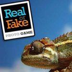 REAL OR FAKE Photo Game