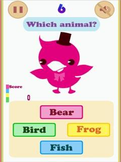 Imagen Animals & Colors