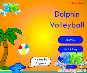 Imagen Dolphin Volleyball